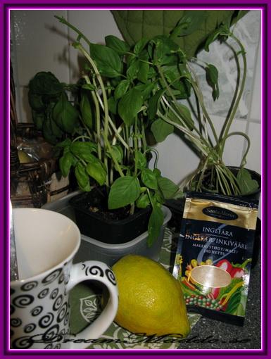 Mitt egna basilika-, citron och ingefärate!