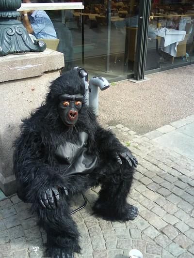 Brunnsparkens Zoo? ^^